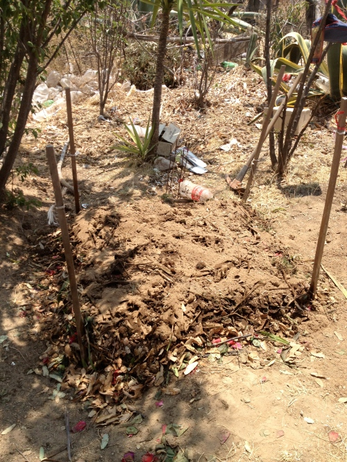 "The Start of Compost in Capula. We asked a local flower shop for the scraps they didn't want in order to provide the needed ""green material."""