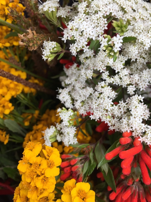 Medicinal plant bouquet